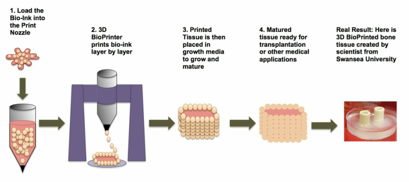 ethics of bioprinting Texas startup is on cusp of 3d printing human organs but it must contend with making the technology cost effective  bioprinting is somewhere near the bottom,.